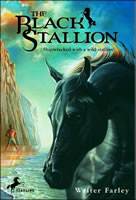 The Black Stallion book cover