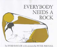 Everybody Needs a Rock book cover