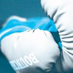 picture of a boxer bag