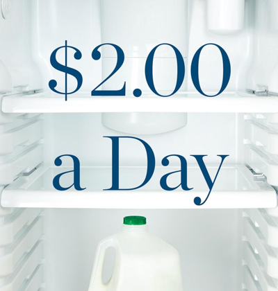 """book cover """"$2.00 a Day: Living on Almost Nothing in America"""""""